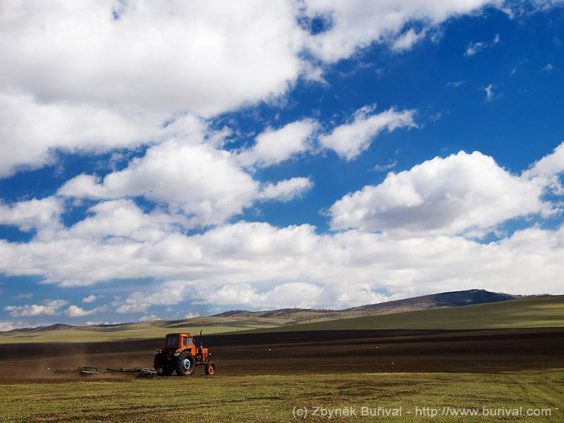 Traktor orající pole v Mongolsku